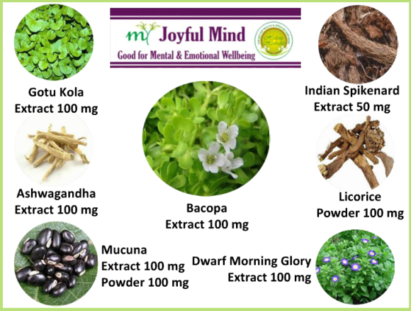 Natural Herbs present in Herbal Supplement for Mental and Emotional Wellbeing