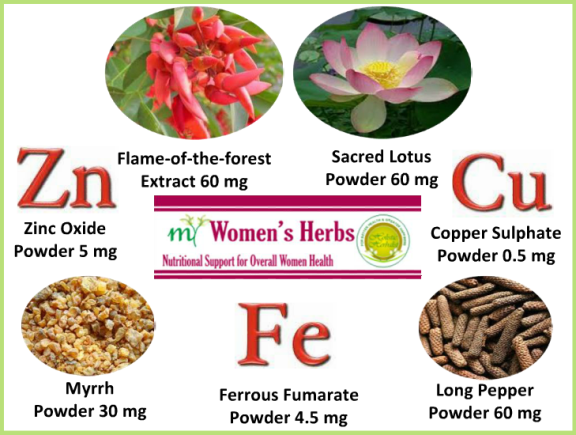 Herbal Supplements for Women - My Women's Herbs